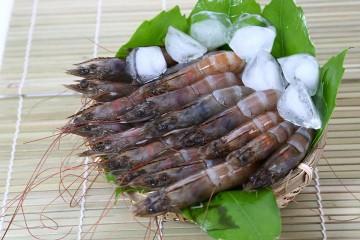 無毒安心白蝦 | 以自然微生物和益生菌自行發酵飼料飼養的甜美白蝦,甜又Q!